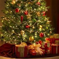 Mutui: promozioni di fine anno sotto l'albero